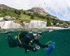 Dono das mais belas paisagens, São Sebastião oferece os melhores locais para mergulho